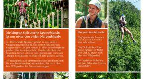 Abenteuer im Kletterwald