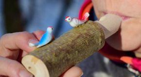 Kreatives Basteln mit natürlichen Materialien