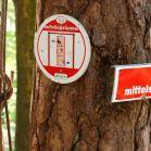 Kletterwald 2012