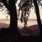 Nebelige Herbststimmung